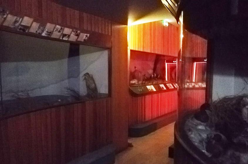 saint omer deux nouveaux escape game ouvrent leurs portes saint omer ce week end delta fm. Black Bedroom Furniture Sets. Home Design Ideas